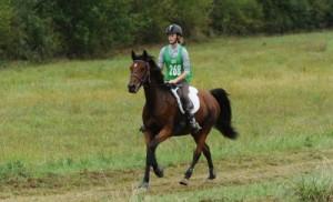 Le cheval, Une passion
