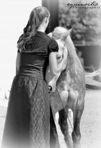 Le cheval compte sur vous pour protéger ses dents